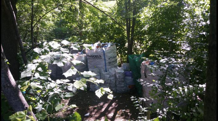 Deșeuri reciclabile, ascunse în Nord