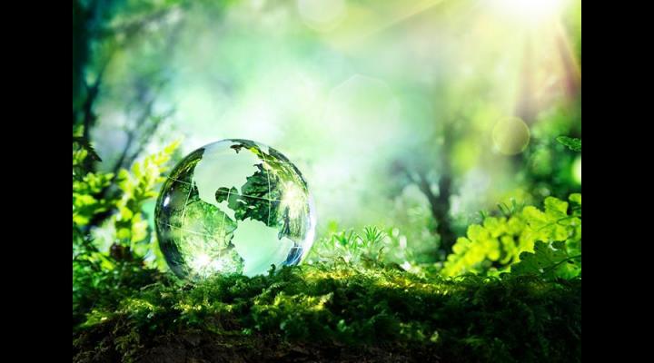 Ziua mediului va fi marcată la Ploiești pe 6 iunie! Vezi ce evenimente sunt programate cu această ocazie!