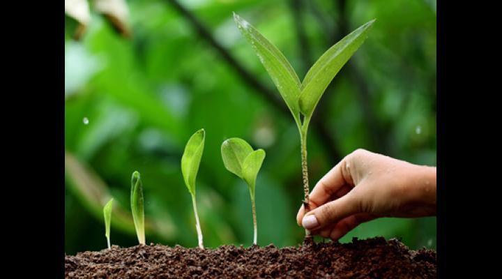 5 iunie - ziua mediului. Tema de anul acesta: ''Conectarea oamenilor la natură''