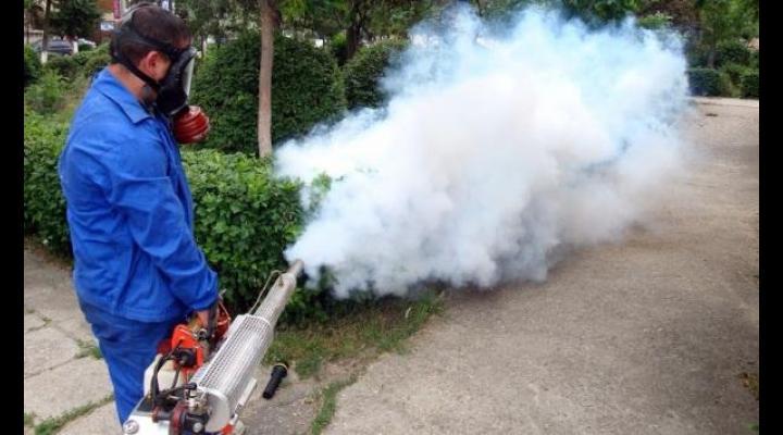 Incep actiunile de dezinsectie, deratizare si dezinfectie in Ploiesti