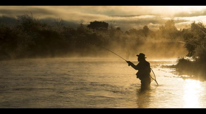 Prahoveni sanctionati dupa ce au fost prinsi la pescuit in perioada de prohibitie