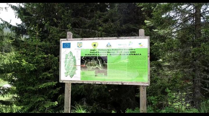 VIDEO / Rezervația naturală Turbăria Lăptici, un punct turistic din Bucegi mai puțin cunoscut