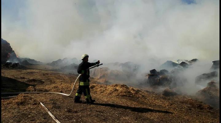 Cum evităm incendiile de vegetații