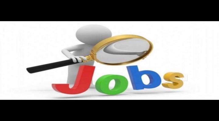 AJOFM Prahova organizează Bursa locurilor de muncă data de 18 octombrie în Ploiești și Câmpina