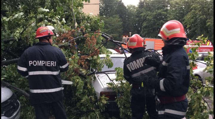 Două mașini au fost avariate în Ploiesti după ce un copac a căzut peste ele