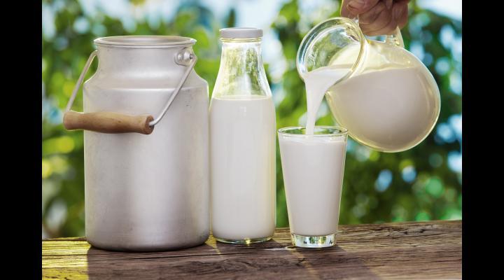 Proiectul care prevede etichetarea laptelui şi a produselor lactate, modificat de Camera Deputaților