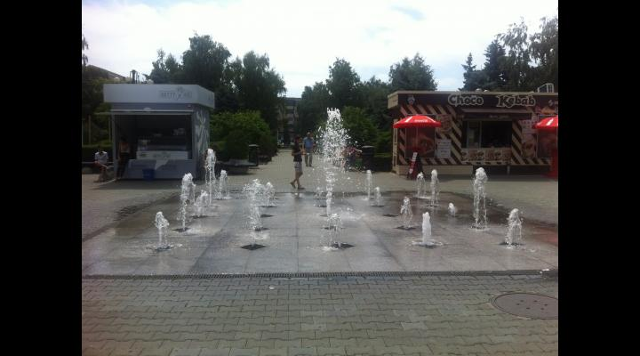 Ce măsuri ia Primăria Ploiești în caz de caniculă