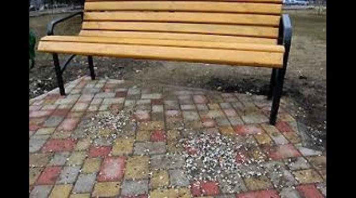Căruțașii și cei care au aruncat  coji de semințe pe domeniul public, amendați de Poliția Locală Ploiești