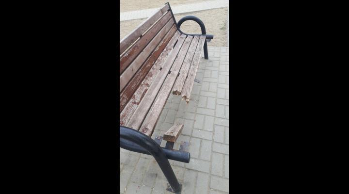 Primarul Ploiestiului a cerut urgent note explicative sefilor Politiei Locale pentru lipsa de reactie in urma actelor de vandalism din oras