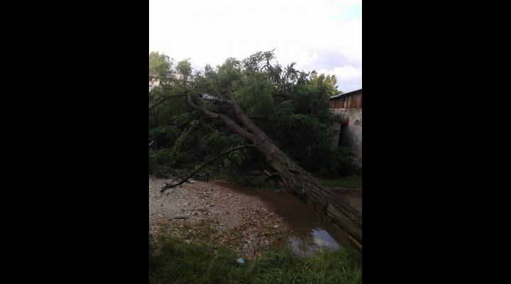 Vremea rea a creat probleme pe Valea Prahovei, la Bușteni și Azuga