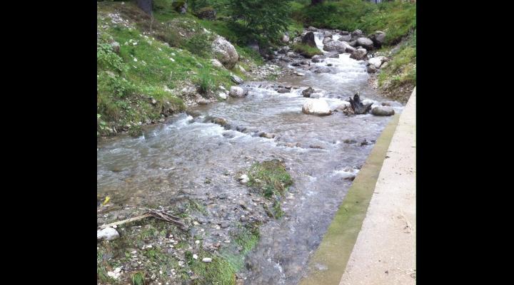 Prahovenii afectați de inundațiile provocate de pârâul Dâmbu primesc o veste bună