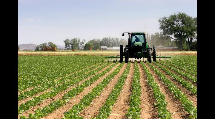 70 milioane euro disponibili pentru finanțarea proiectelor de investiții în procesarea produselor agricole