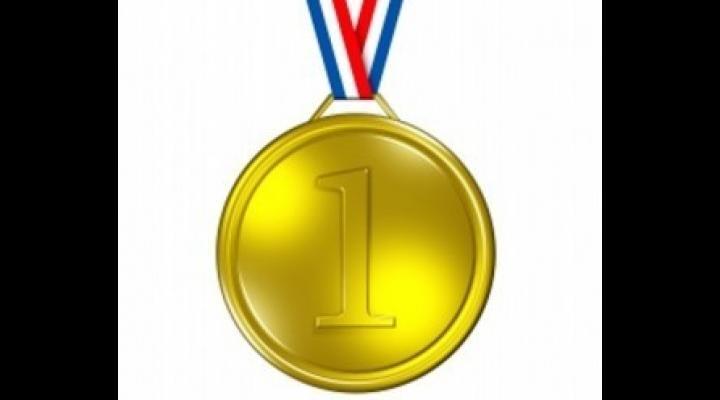 Trei premii (două medalii de aur și o medalie de argint), la Olimpiada Internaţională de Geografie 2017