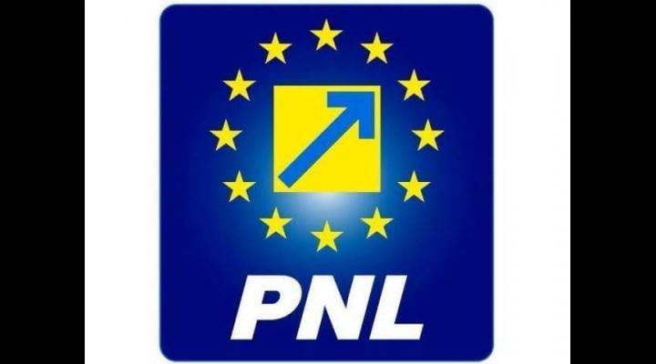 """PNL: """"Viața domnului președinte Mircea Ionescu Quintus este un model pentru orice liberal, pentru orice român"""""""