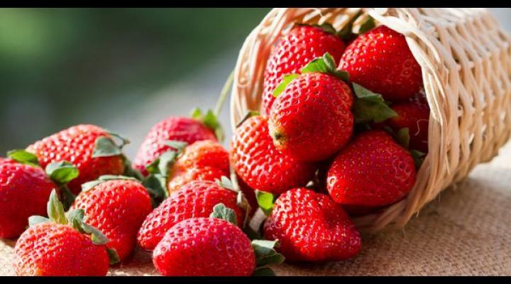 AJOFM Prahova, prin rețeaua Eures, oferă 800 locuri de muncă vacante în Spania, la cules de căpșuni. Află de aici care sunt condițiile!
