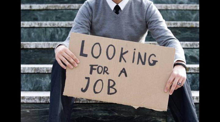 Absolvenții prahoveni sunt invitați la BURSA DE TOAMNĂ a locurilor de muncă. Vezi când și unde va avea loc acțiunea!