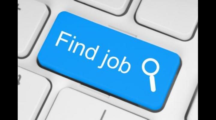 Aproape 1000 de joburi au fost anunțate până acum la bursa locurilor de muncă pentru absolvenți, în Prahova