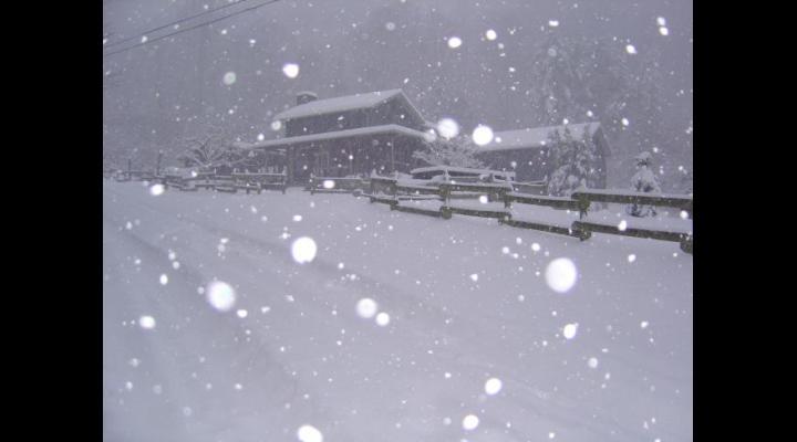 Avertizare ANM de ninsori și viscol la munte
