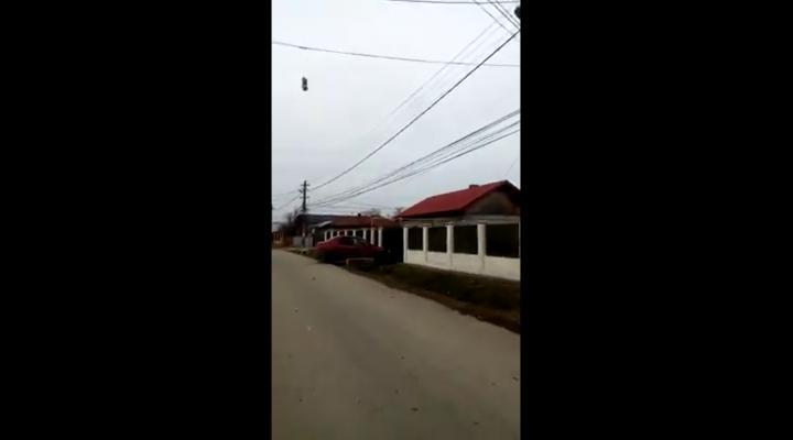 Dosar penal in cazul cainelui atarnat la Pucheni, de cablurile telefonice
