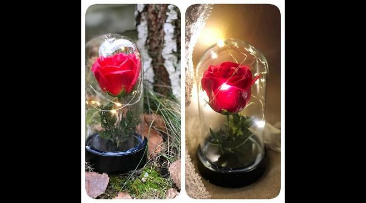 (P) Trandafirii criogenati, un cadou special