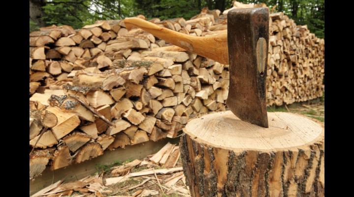 Perchezitii la mai multe persoane din Podenii Noi, banuite ca au furat lemne