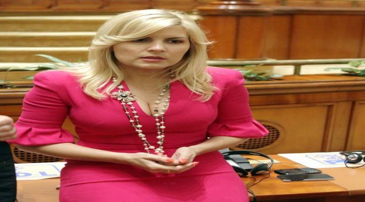 ARESTAREA ELENEI UDREA, decisă luni în Parlament