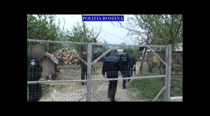 Descinderi la hotii de lemne, printre acestia fiind si padurari, in Prahova - VIDEO