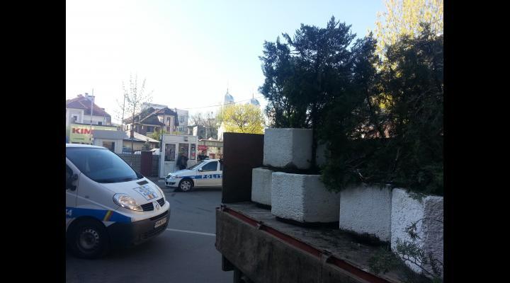 ARBUSTII, SAMANTA DE SCANDAL