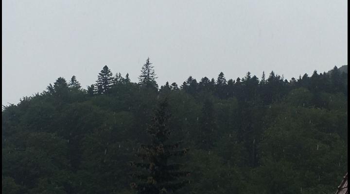 VIDEO Vreme capricioasa la munte. Pe platoul Bucegilor fulguie