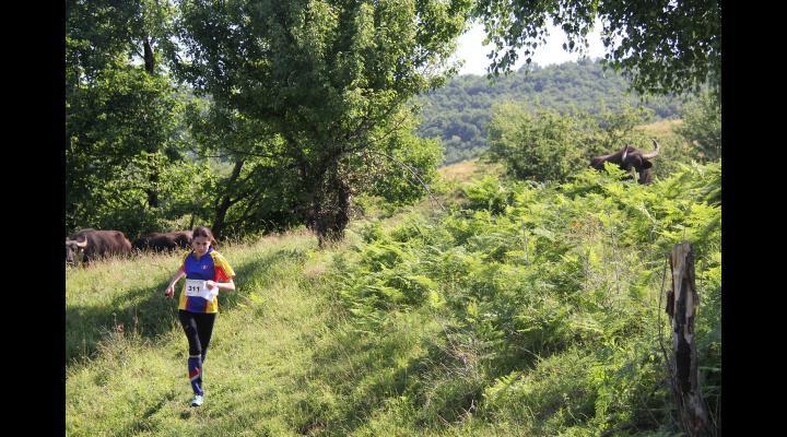 Cupa României la Orientare se desfășoară la Comarnic în weekend-ul de Rusalii