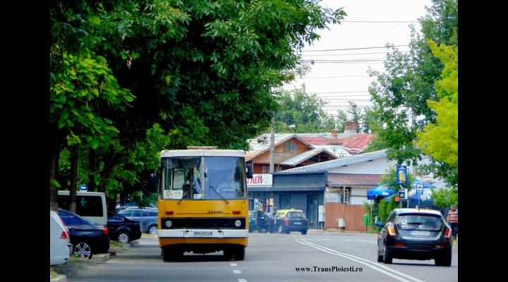 TCE  vinde la fier vechi 23 de autobuze.