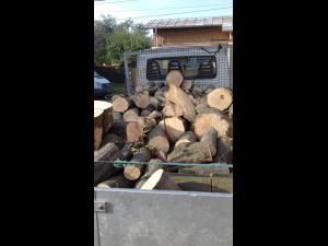 Prinsi ca transportau lemne fara avize de insotire