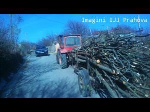 Actiuni ale jandarmilor, in mai multe localitati, pentru combaterea furturilor de material lemnos