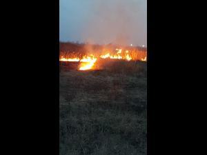 Pompierii prahoveni, solicitati sa stinga mai multe incendii de vegetatie uscata in Prahova - VIDEO/FOTO