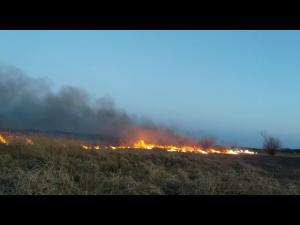 Casa mistuita de flacari in urma unui incendiu de vegetatie uscata, in Podenii Noi