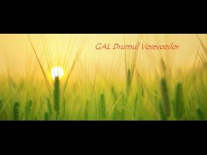 GAL Drumul Voievozilor: anunt prelungire sesiune proiecte