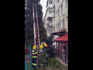 Pompierii din Dâmbovița au salvat o pisicuță