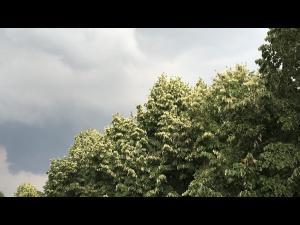 Cod galben emis pentru nordul județului Prahova