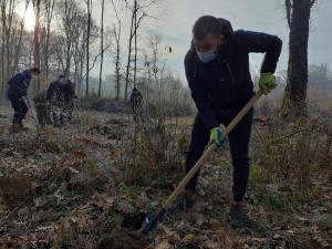 STOP tăierii în Pădurea Păulești! Pauleștenii au plantat 2.000 de stejari în pădurea statului