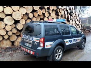 8.500 de acţiuni,  în primele șase luni ale anului, pentru protecția pădurilor