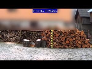 Se fac verificări în Prahova pentru depistarea celor care fură lemne - VIDEO