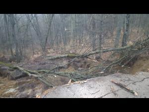 UPDATE: Drumul dintre Campina si Sotrile a fost inchis!!! FOTO E jale pe un drum din Prahova. Soseaua a fost distrusa de o alunecare de teren