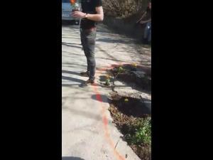 Gropile din asfalt astupate cu ....flori, intr-o comuna prahoveana - VIDEO