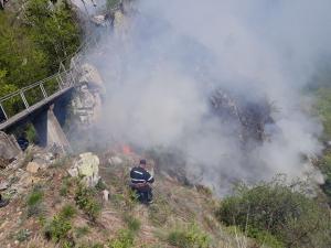 Si pompierii prahoveni intervin pentru lichidarea incendiului de vegetație uscată și litieră de pădure, produs în comuna Arefu