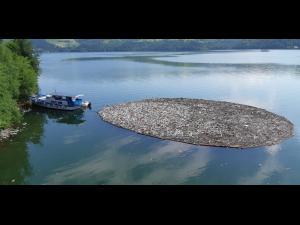 FOTO Cum arata lacul Bicaz, in urma viiturilor. Este organizata o actiune de ecologizare