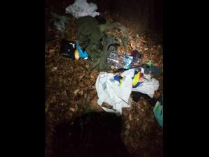 5 turisti fugariti de o ursoaiaca cu pui, pe traseul Vf.Omu - Gura Diham. De frica, turistii au aruncat bagajele - VIDEO/FOTO