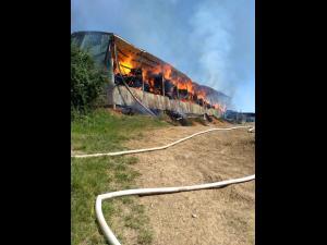 Incendiu violent in Ceptura la un adapost in care se aflau baloti de lucerna - VIDEO/FOTO