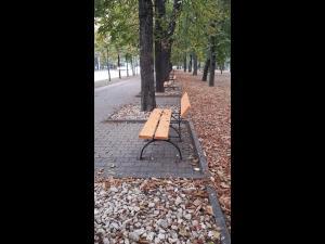 FOTO: SGU continuă activităţile de înfrumuseţare şi îngrijire a spaţiilor verzi din oraş