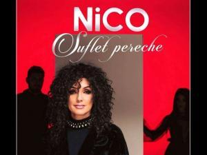 """""""Suflete pereche"""" - piesa noua de la Nico, in luna dragostei. Ascult-o aici! - VIDEO"""